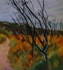 Deep Creek track Pastel 35 x 35 cm
