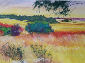 Pankhurst's view (On Hindmarsh Island) Inktense SOLD