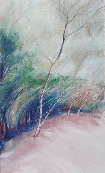 Mt William walk 1 Mixed media 55 x 32 cm $150 unframed