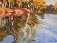 River journey 2 Acrylic 30 x 40 cm $300 stretched canvas