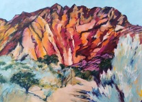 Arkaroola 1 (Echo Camp) 42 x 59 cm Acrylic $350 framed