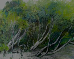 Tokuremoar wetlands Oil, oil pastel and charcoal 27 x 33 cm $150 unframed