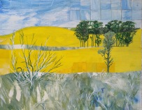 Mid North Canola Collage and ink $250 34 cm x 41 cm framed