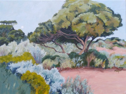 Nullarbor evening camp Acrylic 46 x 60 cm Stretched canvas SOLD